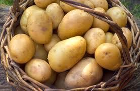 bulviu krepsys