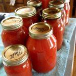 pomidoru padazas 1